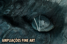 Ampliacoes Fine Art, #0025 © Carlos Dias 2009