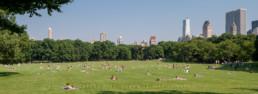 Central Park, New York City #48 © Carlos Dias 2007