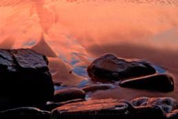Parque Natural de Sintra-Cascais #16 © Carlos Dias 2002
