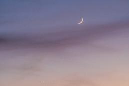 Conjunção da Lua e Vénus #8064 © Carlos Dias 2016