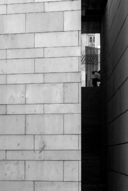 Pausa, #1076 © Carlos Dias 2015