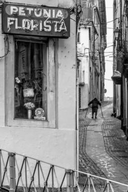 Dona Adelaide, Coimbra, #1015 © Carlos Dias 2015