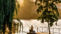 Pescador no Rio Mondego, #2217 | © Carlos Dias 2017