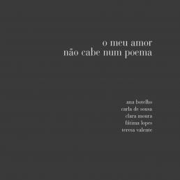 o meu amor não cabe num poema foto livro